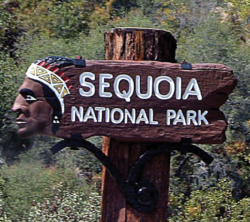 Two hikers fall to their deaths in Sequoia National Park