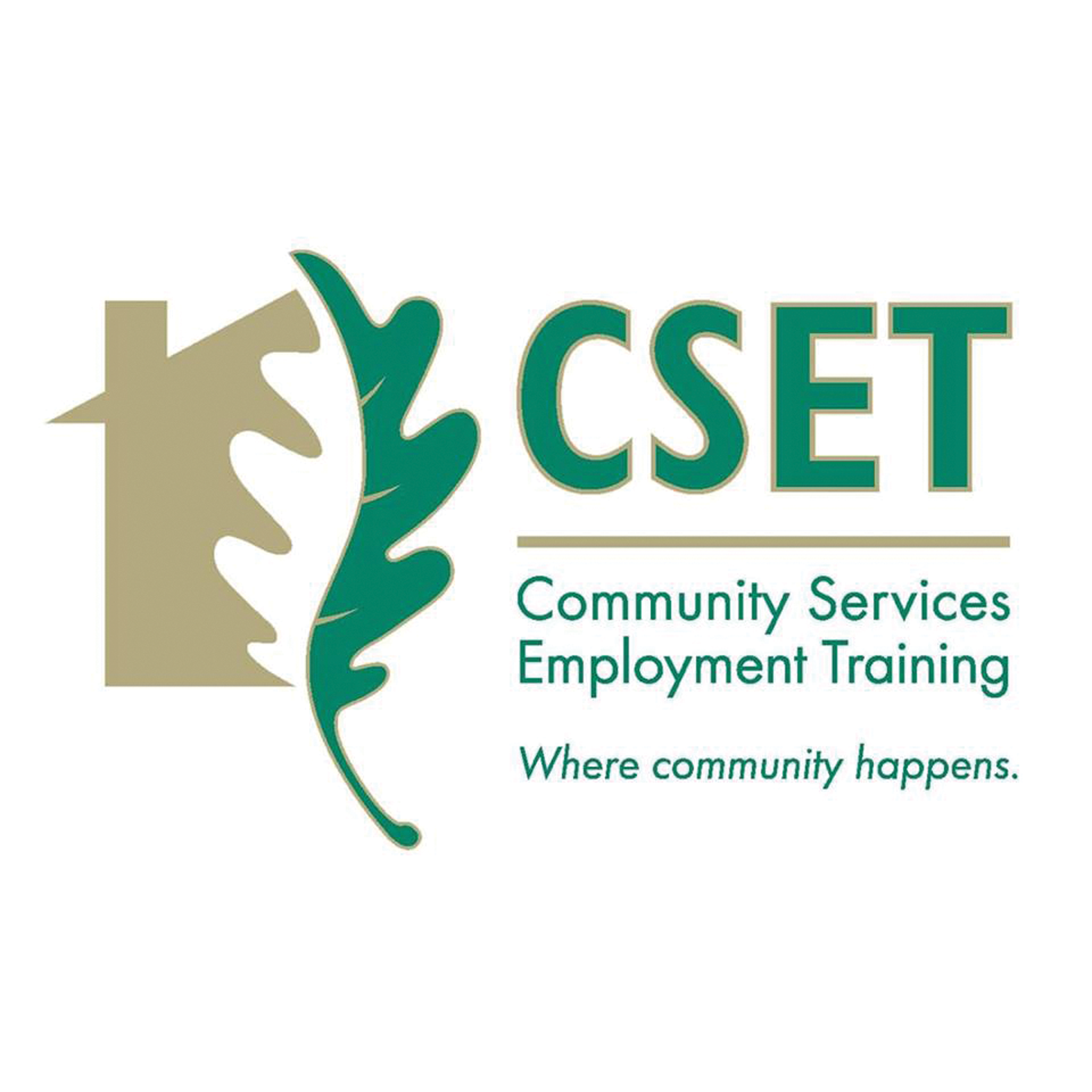 CSET holds hearing on how to help public