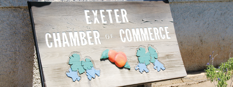 Exeter council chops Chamber from budget