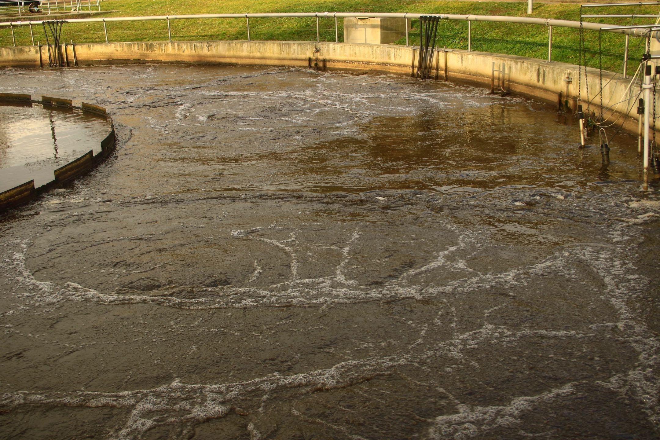New details clog Farmerville's sewer plant