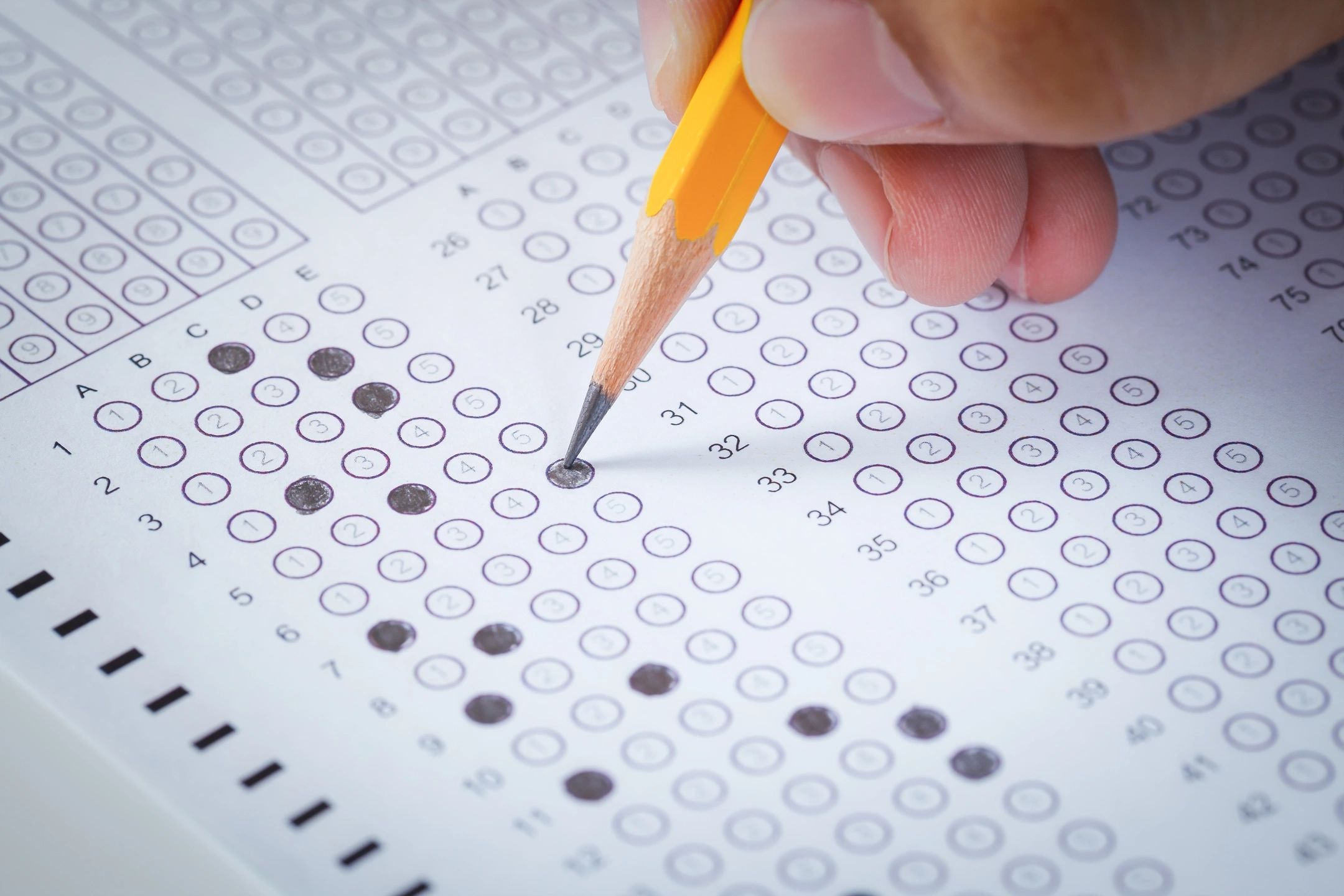 County schools see few gains in state testing