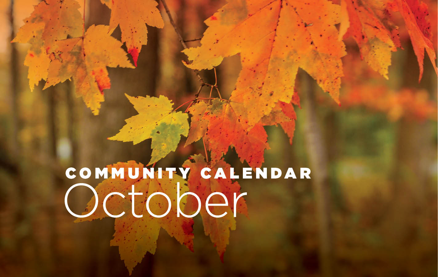 Community Calendar for October 2019
