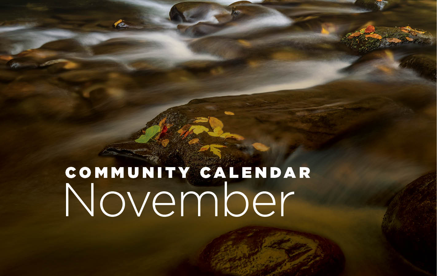 Community Calendar: November 2018