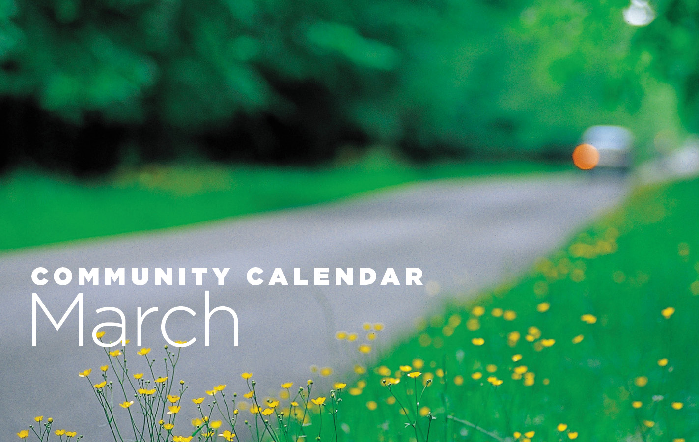 Community Calendar for March 2019