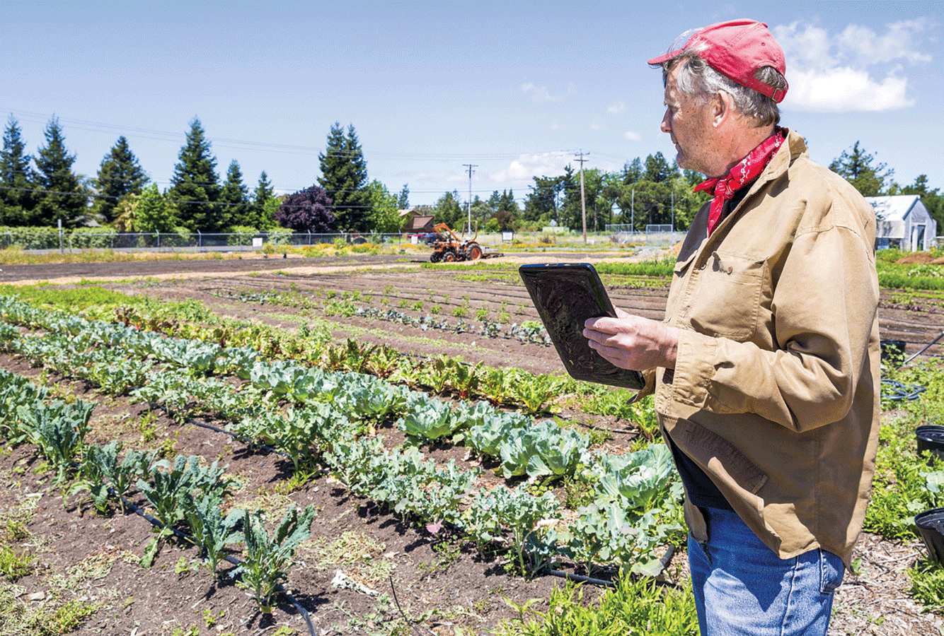 Farms explore new sales options from e-commerce