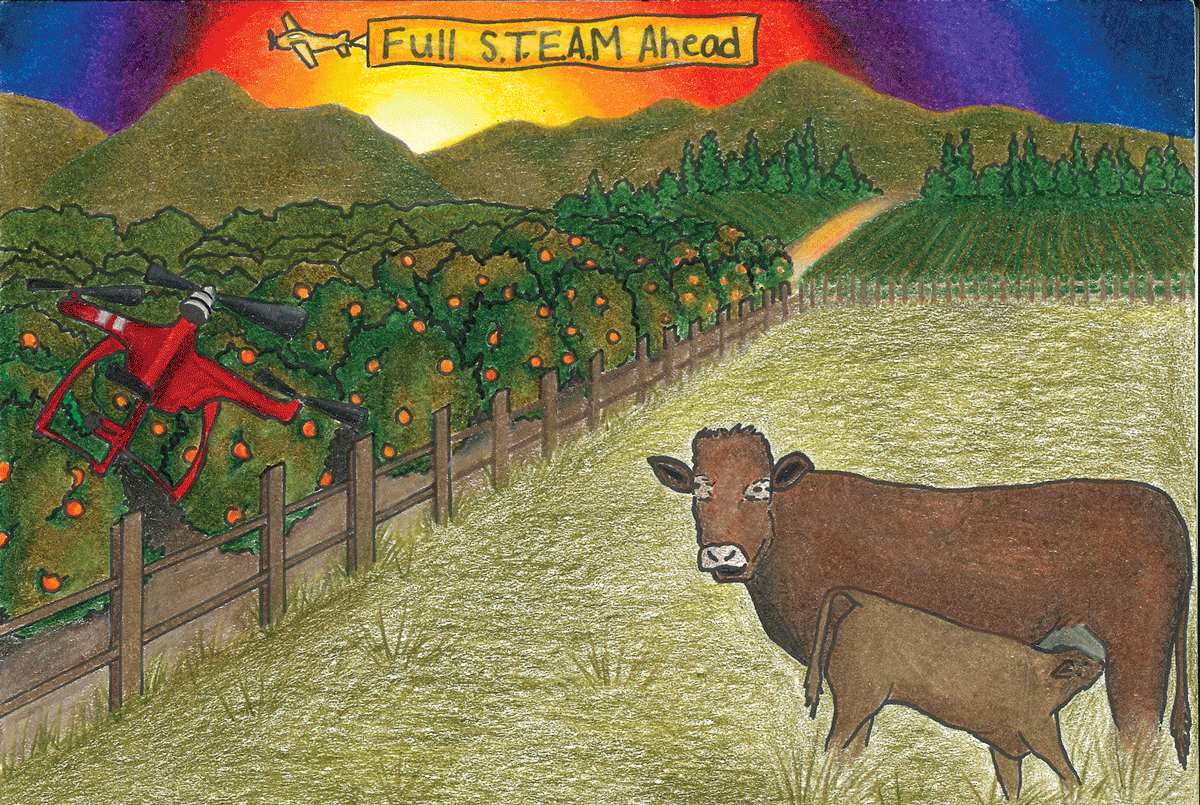 Tulare County Farm Bureau announces Calendar Art winners