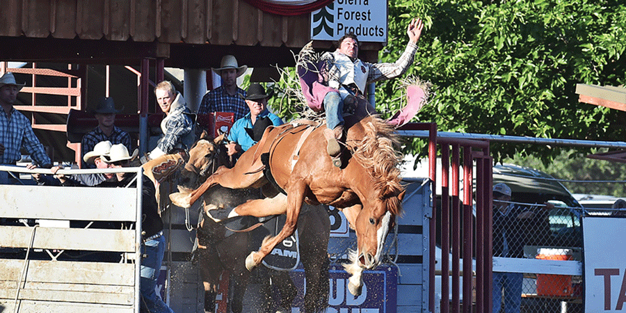 'Biggest Little Rodeo in the West' returns